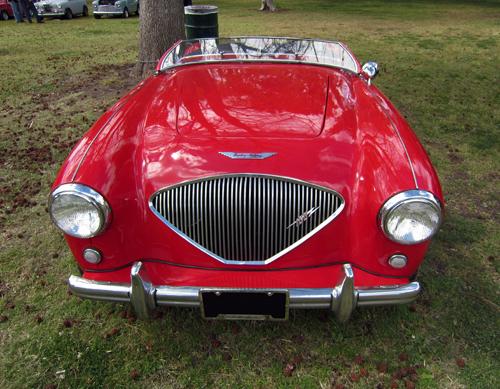 1953 Austin-Healey 100 front