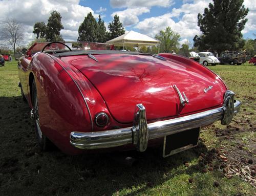 1953 Austin-Healey 100 rear