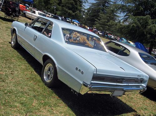 1964 Pontiac GTO rear 3q
